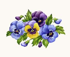 Pansy clipart single Look these ~ pansies art