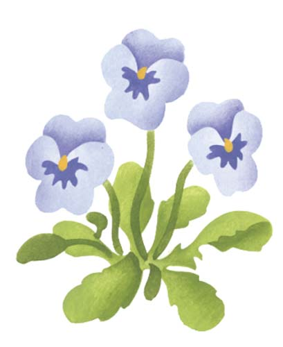 Pansy clipart single Single Wall Stencil Flower