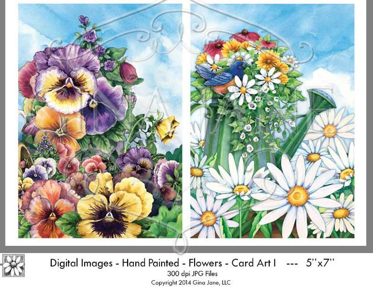Pansy clipart spring flower #13