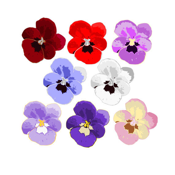 Pansy clipart spring flower #6