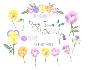 Pansy clipart spring flower #8