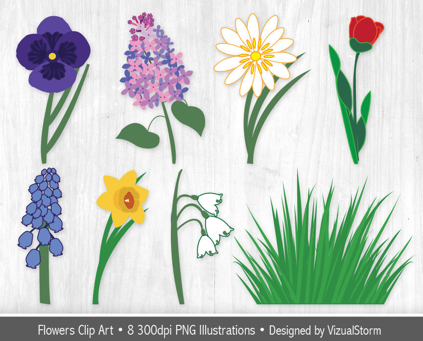 Pansy clipart spring flower #1