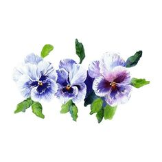 Pansy clipart swag #1