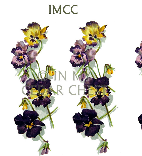 Pansy clipart swag #4