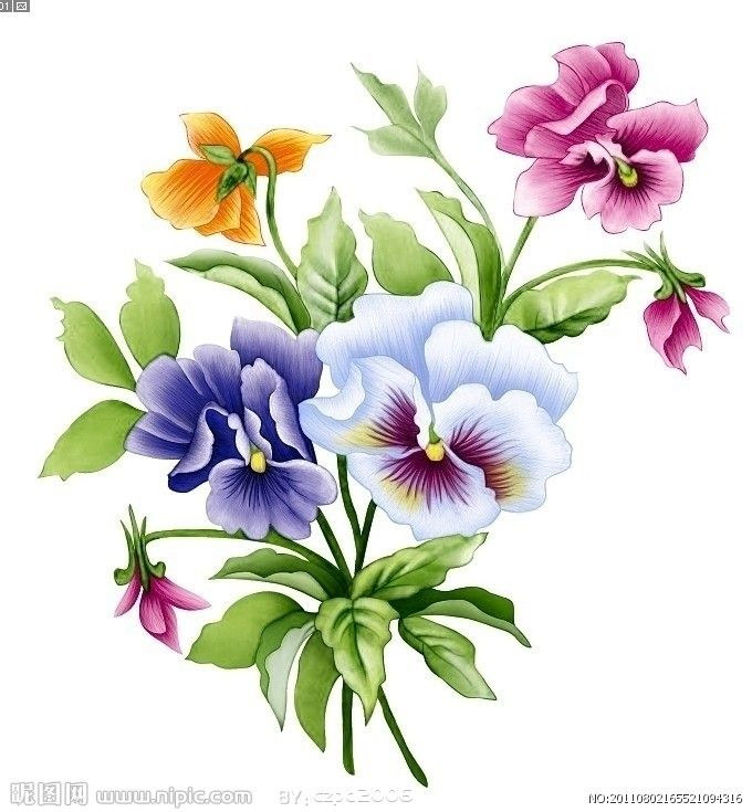Pansy clipart swag #14