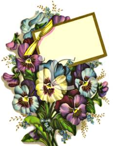 Pansy clipart vintage #5