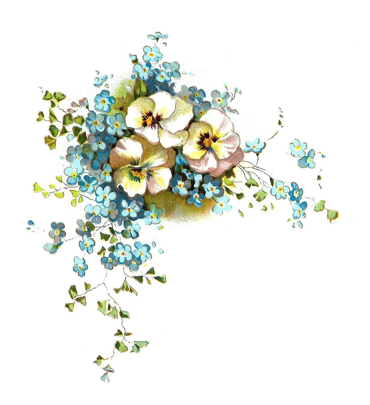 Pansy clipart vintage flower border Clipart запросу по vintage vintage