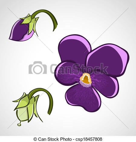 Pansy clipart viola flower #4