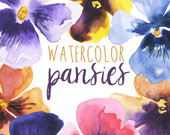Pansy clipart watercolor Pansies Clipart Clip Floral Art