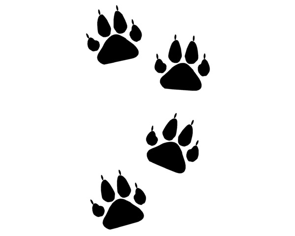 Wolverine clipart paw 0011 Photos Mascots Badger