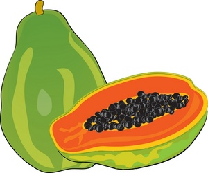 Pawpaw clipart different fruit Clipart Papaya Free Clipart Clipart