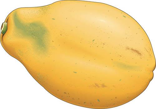 Papaya clipart Papaya Art Papaya Clipart Art