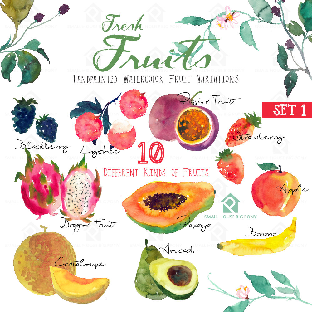 Water Color clipart paint set File Painting Direct a Fruits