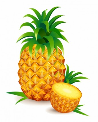 Pineapple clipart single fruit Illustrations Half One Download A