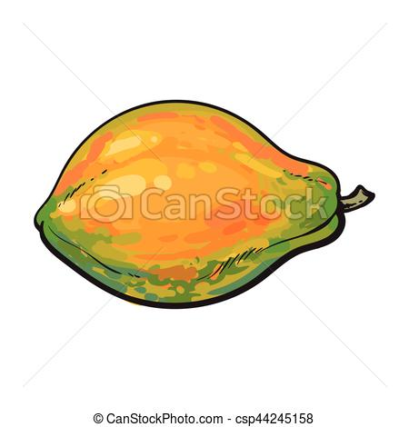 Pear clipart papaya Unpeeled tropical  Whole tropical