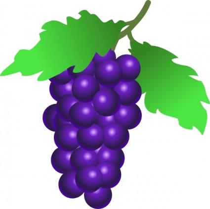 Clipart Images Clipart Free grape%20clipart