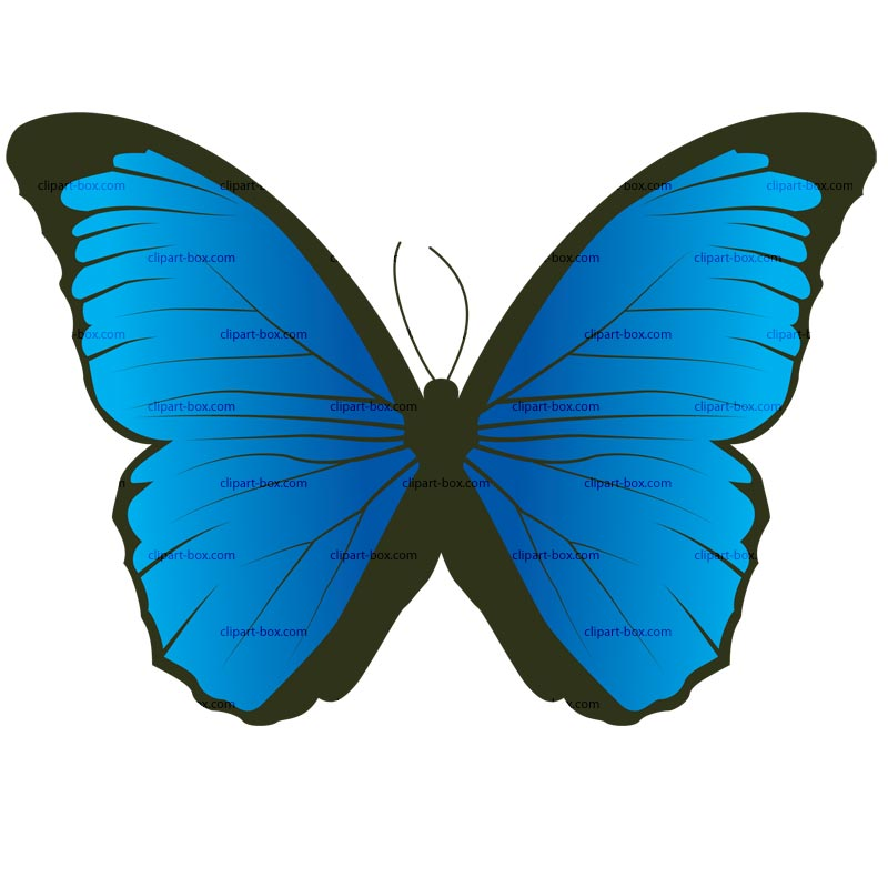 Papillon clipart Clip Clipart on CLIPART Free