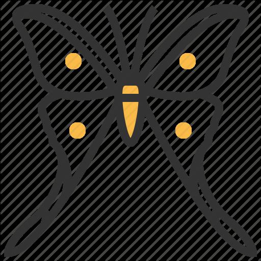 Papillon clipart bug Papillon animal icon search papillon