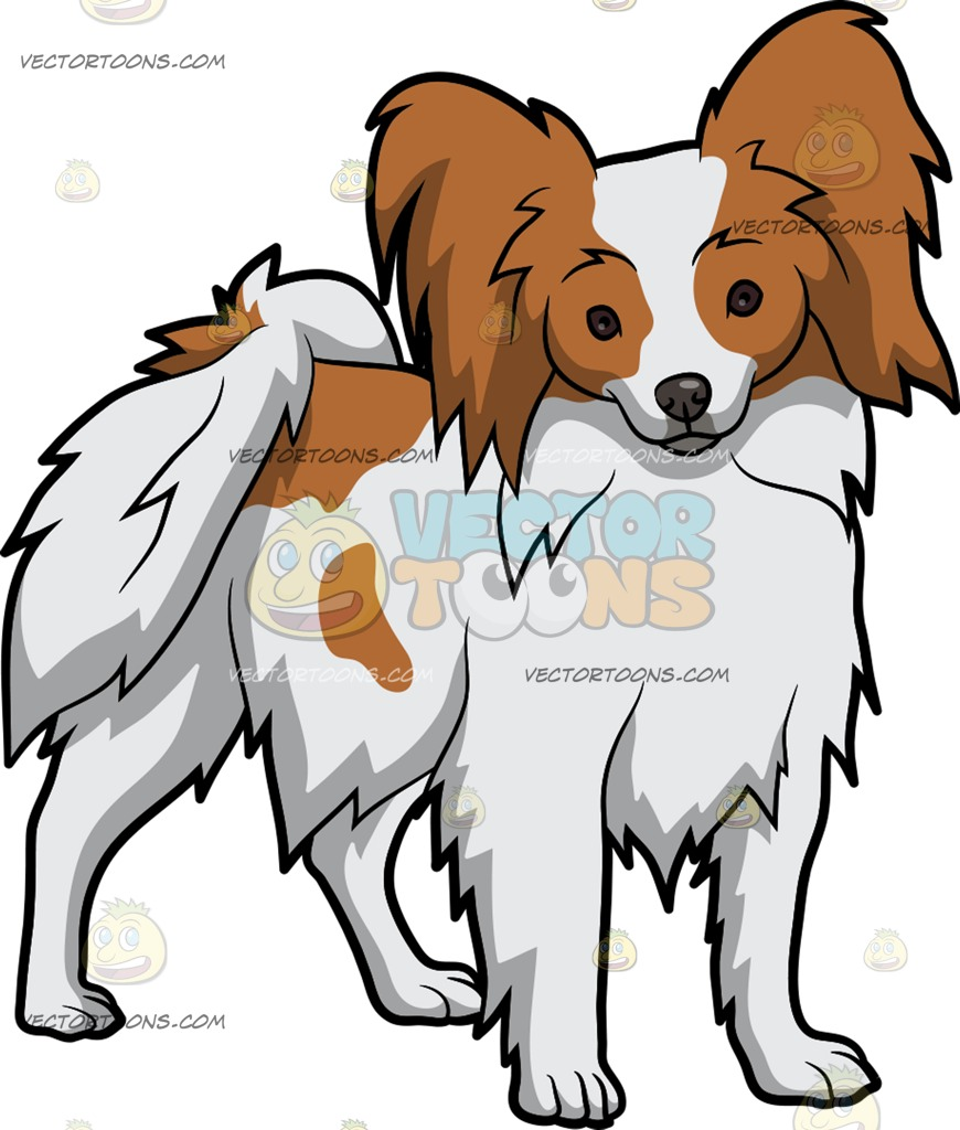 Papillon clipart cartoon E Papillon Cartoon An Alerted