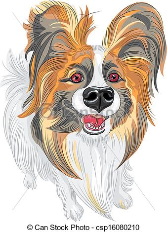 Papillon clipart cartoon Breed Art Papillon Vector Clip