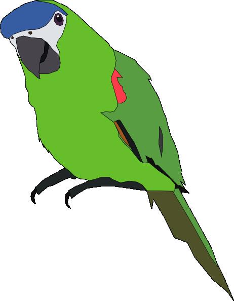 Parakeet clipart Clipart Green Free Download Green