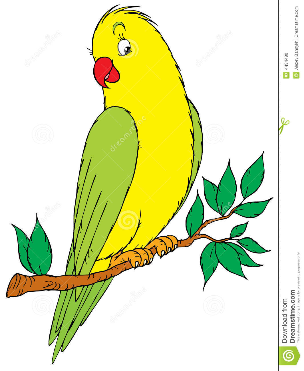 Budgie clipart black and white Two Parakeets Parakeet Clipart cliparts