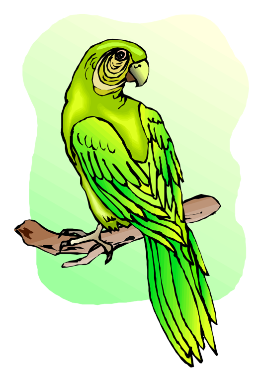 Parakeet clipart perch Collection Free png clipart Clipart