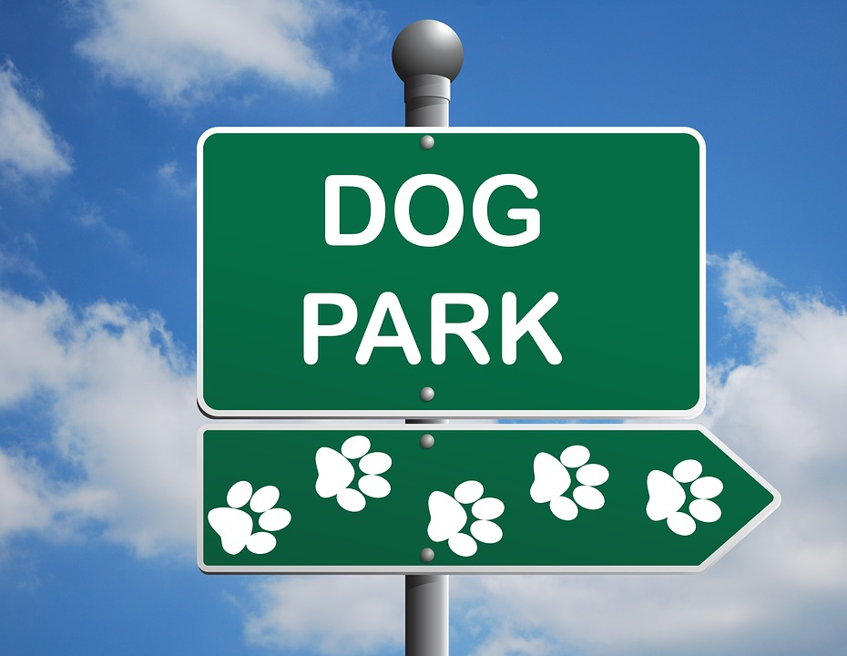 Park clipart dog park Park  Animal Dog Story