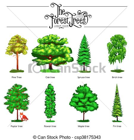 Park clipart forest tree Summer Green white in Forest