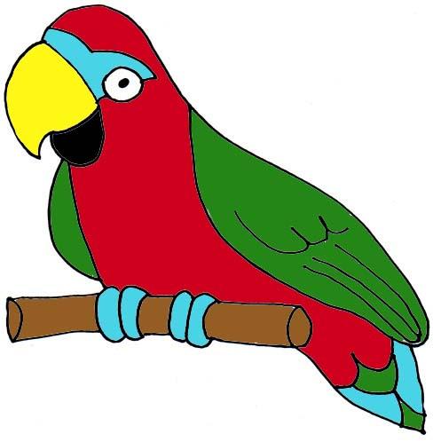 Parrot clipart #5