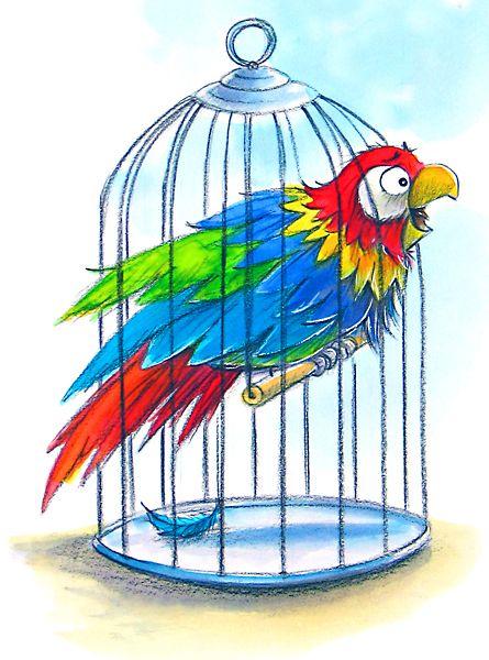 Parrot clipart cage CageClip Wummer 292 Pinterest Bird