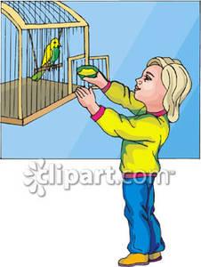 Cage clipart pet bird Food Clipart Bird Putting In