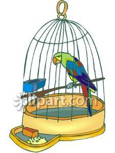 Parrot clipart cage A clipart: Cage In a