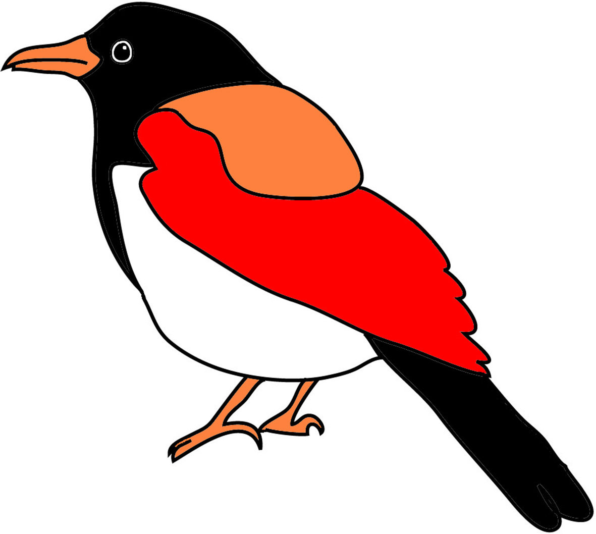 Brds clipart colorful bird Drawing with American of Drawings
