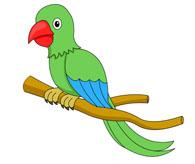 Parrot clipart for kid Free Art Kids Bird Images