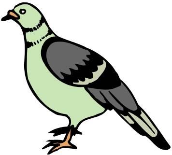 Parrot clipart kabootar Languages Learn कबूतर Indian BIRDS