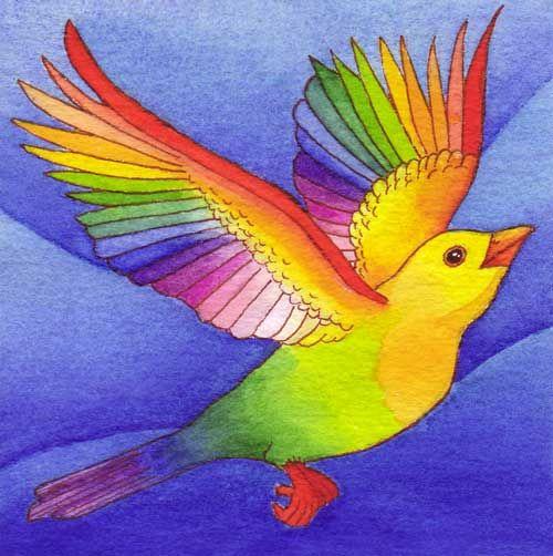 Parrot clipart rainbow color On best 31 bird images