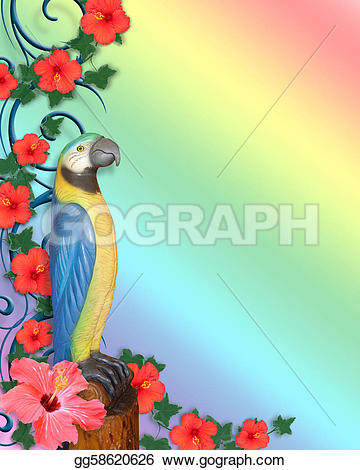 Parrot clipart rainbow color Hibiscus Luau on or Illustrations