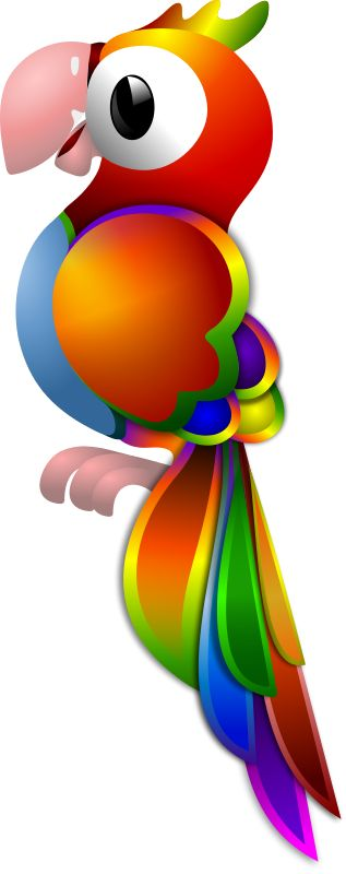 Parrot clipart rainbow color Best on of artwork Colorful