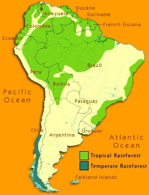 Parrot clipart south america culture On and Lesson Parrot Pinterest