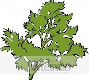 Herbs clipart oregano Clipart Parsley Parsley Herbs Clip