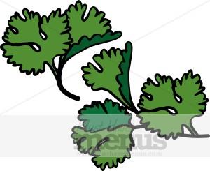 Parsley clipart cilantro Food Clipart Parsley Parsley Sprigs