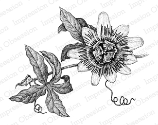 Passion Flower clipart black and white Stamps Flower Impression Obsession Rubber