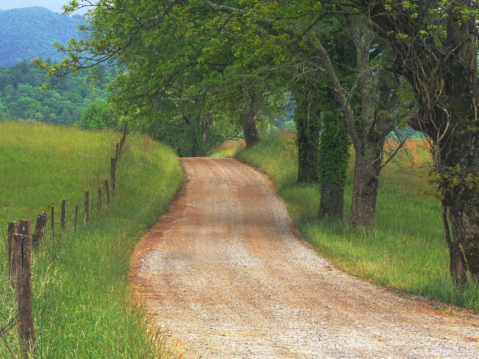 Pathway clipart country road Road When Country 3wordsfor365