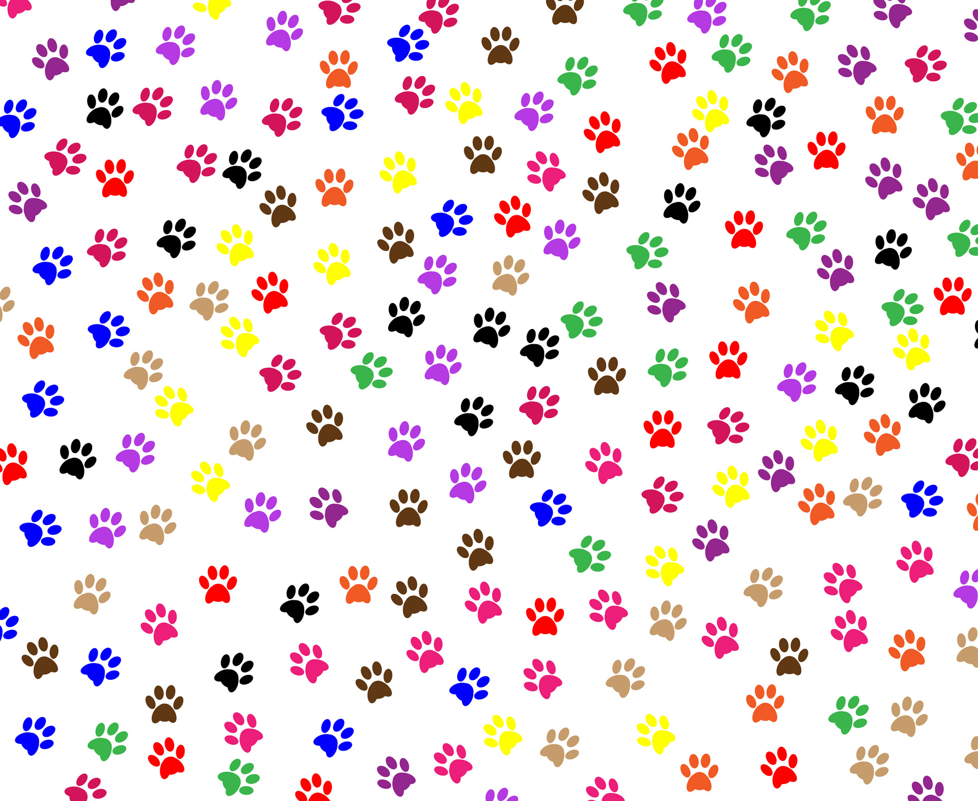 Paw clipart animal backgrounds Paw Wallpapers HD 4k Best