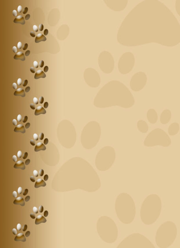 Paw clipart animal backgrounds Paw images Wallpaper Prints! wallpaper