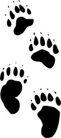 Paw clipart black bear Paw  for Details tracks
