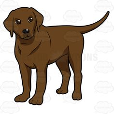 Paw clipart lab Left On Clipart Chocolate Hind