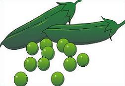 Pea clipart pile Peas Free Clipart Pea