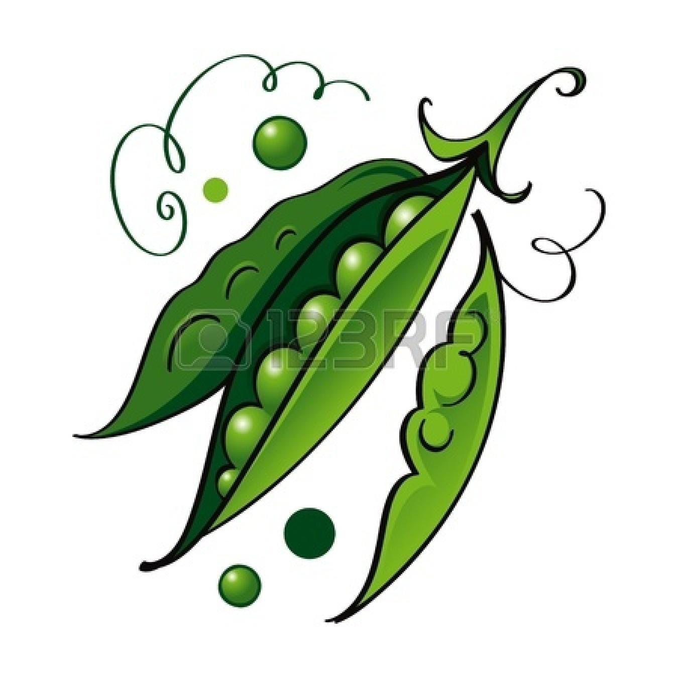 Bean clipart pea plant Flower Clipart Pea Clip Images